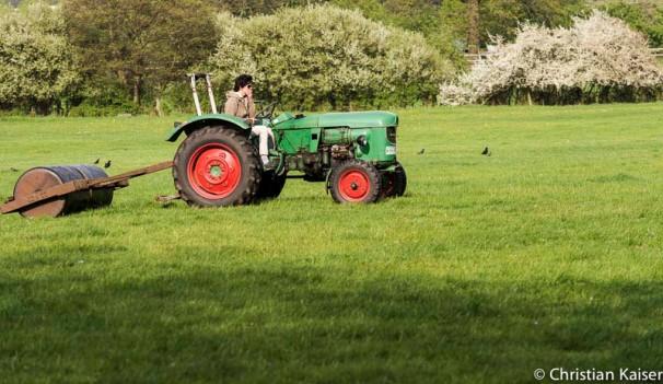 Am Steuer des Traktors sitzt eine Frau sie zieht die schwere Walze über das frische Gras der Pferdeweide.