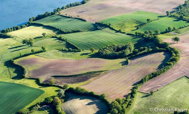 Luftbild von Wiesen und Feldern am hügeligen Ufer eines holsteinischen Sees.