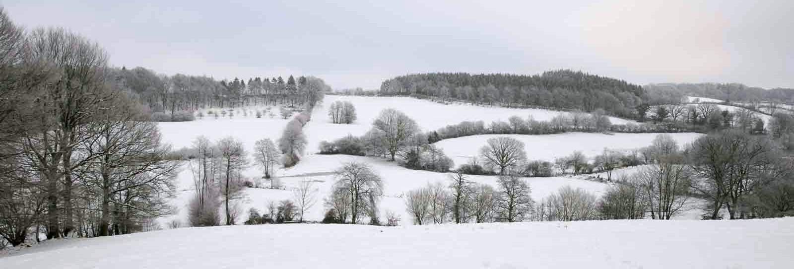 Knicklandschaft, Winter, winterlich, Schnee, Kulturlandschaft, Schleswig-Holstein, Schnee, Schneedecke, Neuschnee