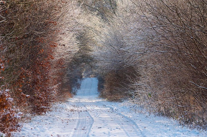 Knick im Winter