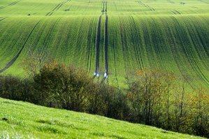 Landschaft bei Roge nahe Neustadt in Ostholstein