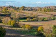 Herbstliche Knicklandschaft bei Bujendorf