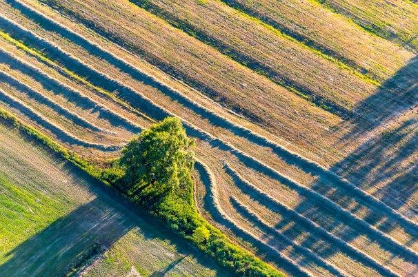 Luftbild von Endmoraenen auf dem Geestruecken