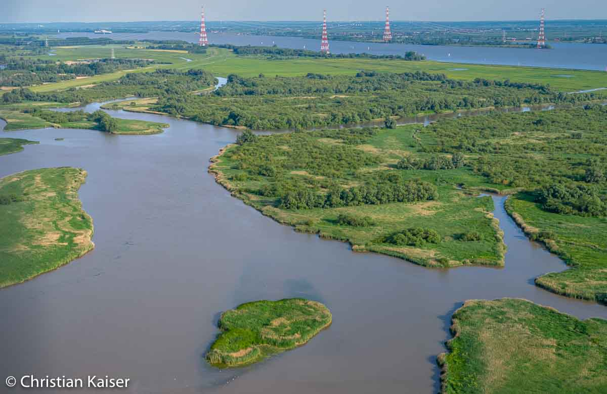 The elbe River with Island Auberg-Drommel and Haseldorfer Binnenelbe with areals of untouched wild nature