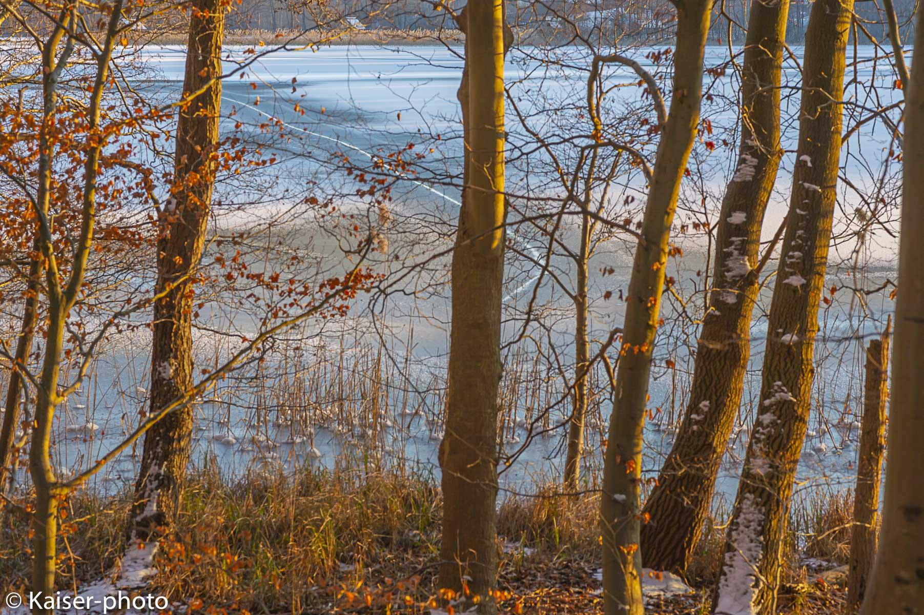 Blick durch den Wald auf den zugefrorenen See