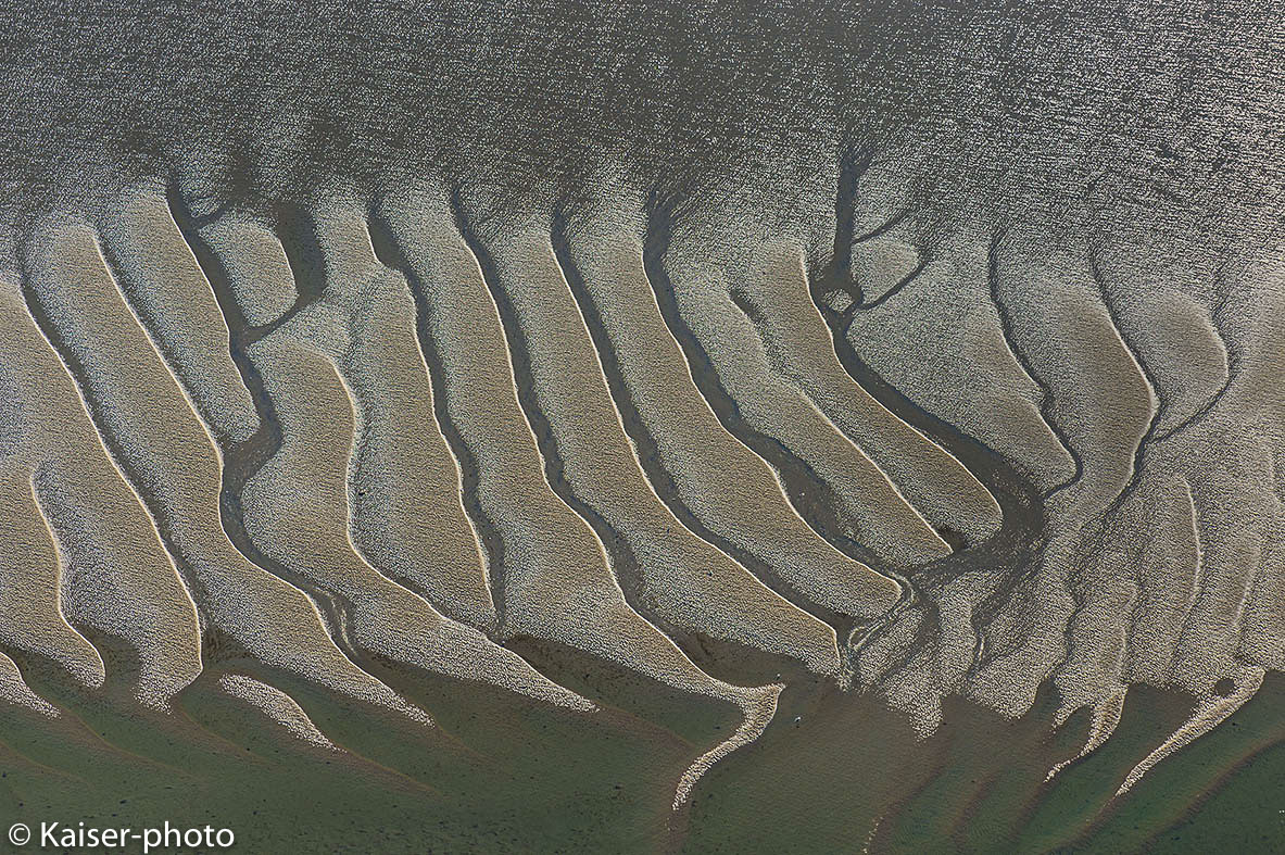 Mega Rippel heißen die Strukturen im Sandwatt
