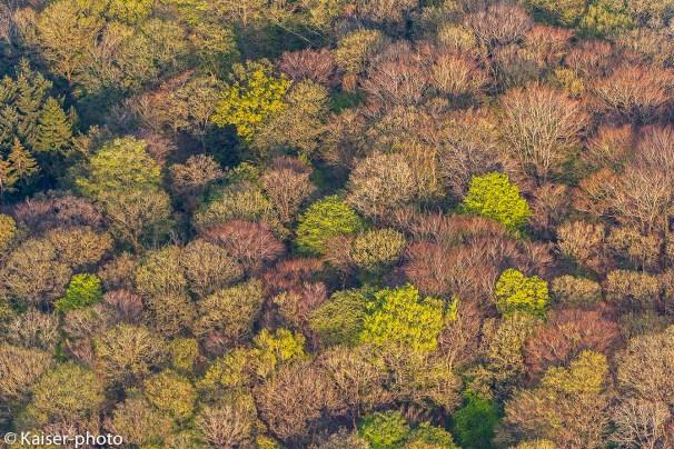 Wälder aus der Vogelperspektive.
